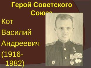 Герой Советского Союза Кот Василий Андреевич (1916-1982)