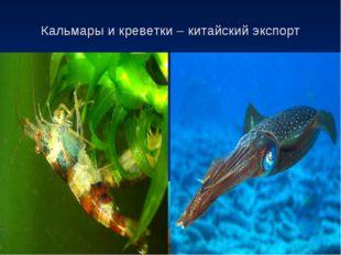 Кальмары и креветки – китайский экспорт