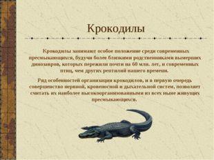 Крокодилы Крокодилы занимают особое положение среди современных пресмыкающихс