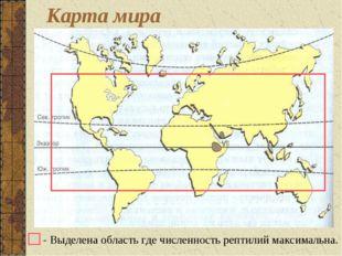 - Выделена область где численность рептилий максимальна. Карта мира