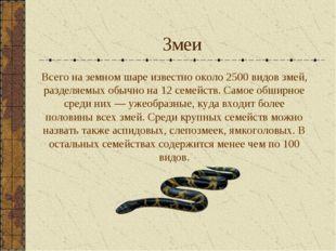 Змеи Всего на земном шаре известно около 2500 видов змей, разделяемых обычно