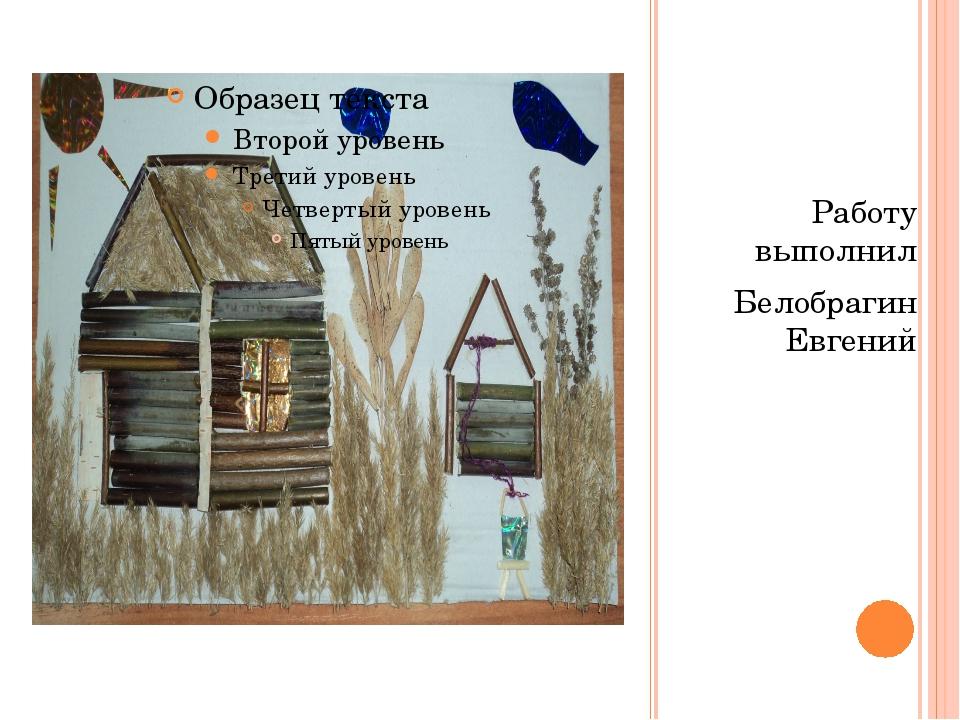 Работу выполнил Белобрагин Евгений