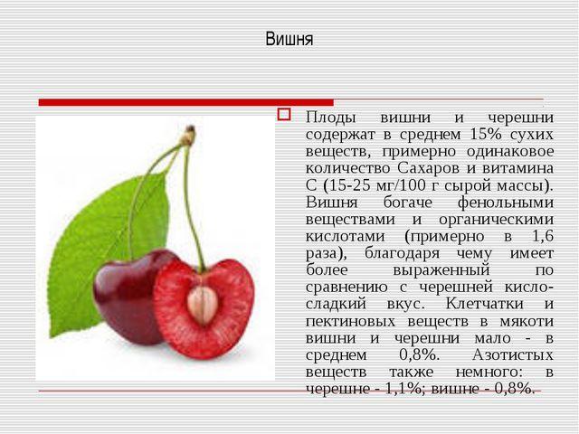 Вишня Плоды вишни и черешни содержат в среднем 15% сухих веществ, примерно од...
