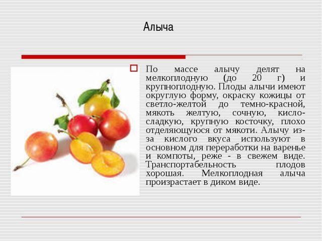 Алыча По массе алычу делят на мелкоплодную (до 20 г) и крупноплодную. Плоды а...