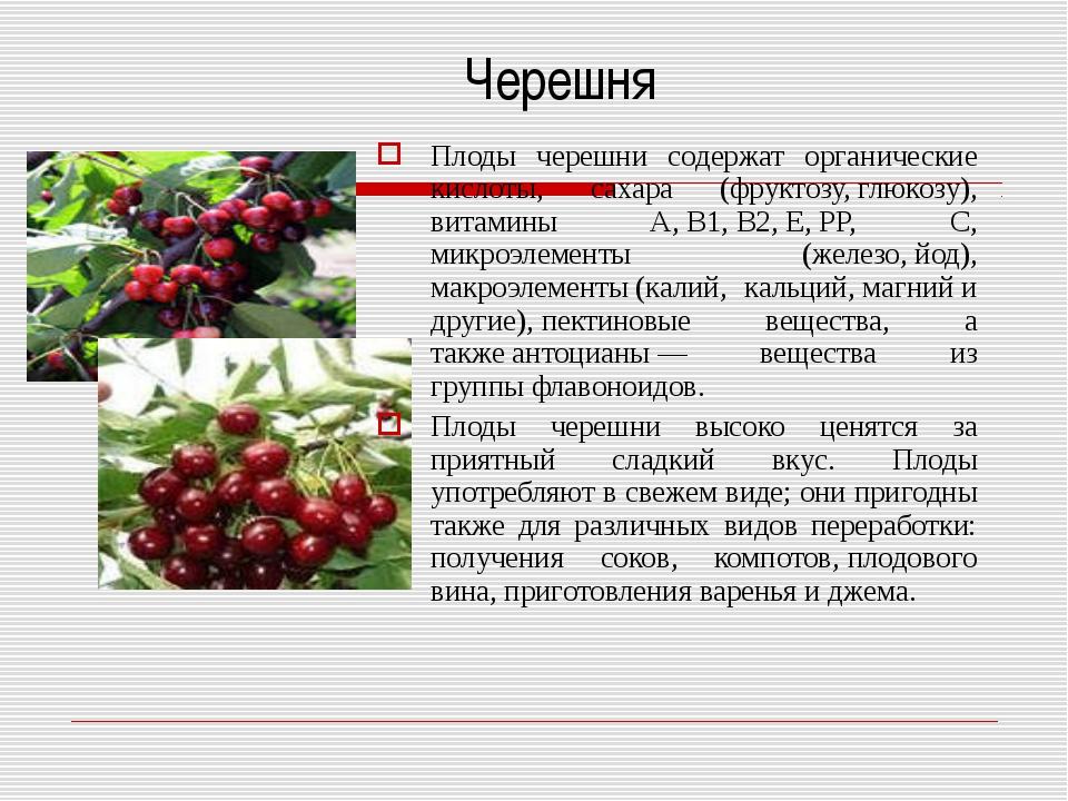 Черешня Плоды черешни содержат органические кислоты, сахара (фруктозу,глюко...
