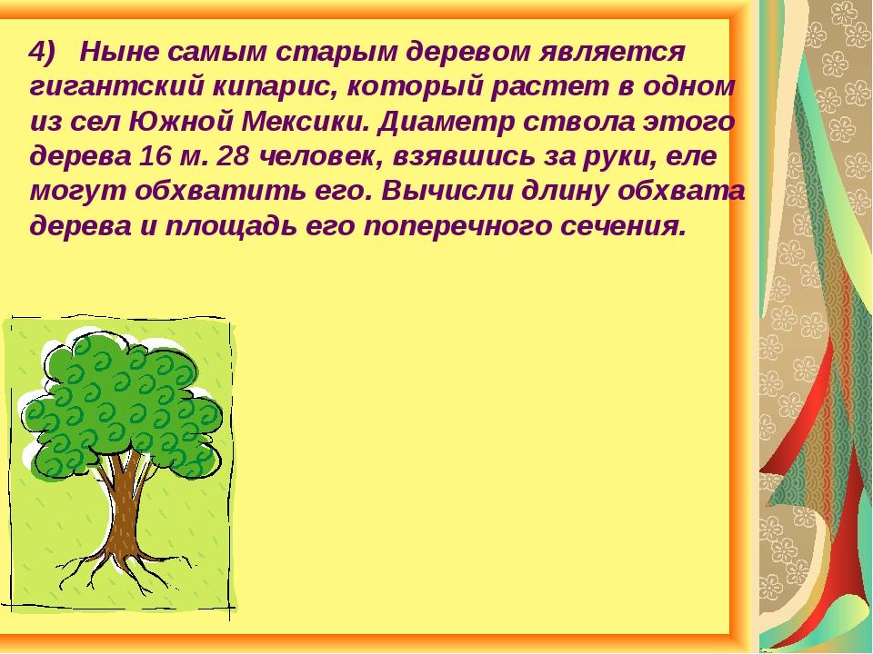 4) Ныне самым старым деревом является гигантский кипарис, который растет в од...