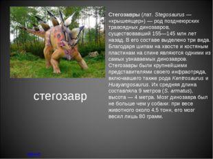 стегозавр меню Стегозавры (лат.Stegosaurus— «крышеящер»)— род позднеюрских