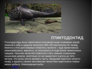 птиктодонтид меню Птиктодонтиды были практически полновластными хозяевами мор