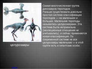 Самая многочисленная группа динозавров-тероподов. Раньше существовала довольн