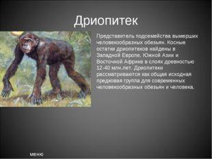 Дриопитек меню Представитель подсемейства вымерших человекообразных обезьян.