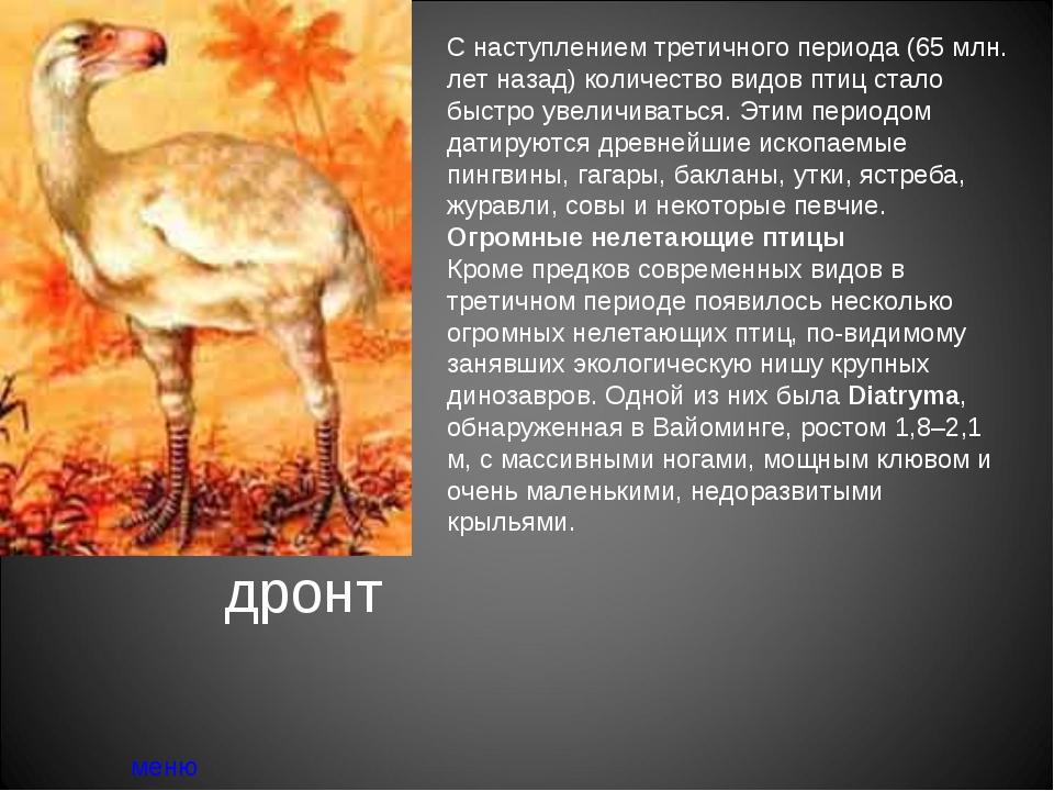 дронт меню С наступлением третичного периода (65 млн. лет назад) количество в...