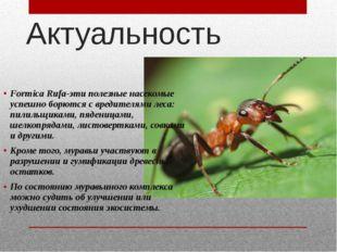 Актуальность Formica Rufa-эти полезные насекомые успешно борются с вредителям