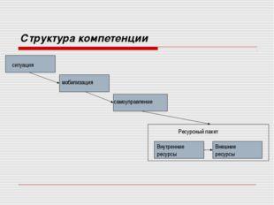 Структура компетенции ситуация мобилизация самоуправление Внутренние ресурсы