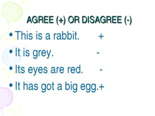 AGREE (+) OR DISAGREE (-) This is a rabbit. + It is grey. - Its eyes are red.