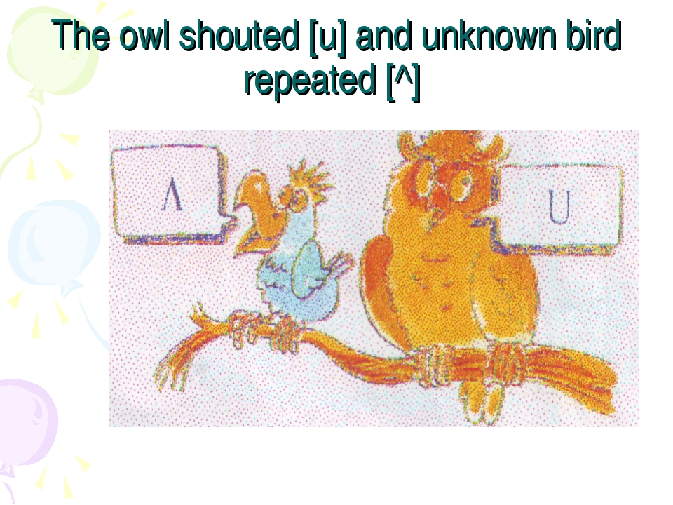 The owl shouted [u] and unknown bird repeated [^]