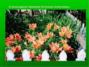 В палисаднике Хворовой Антонины Алексеевны