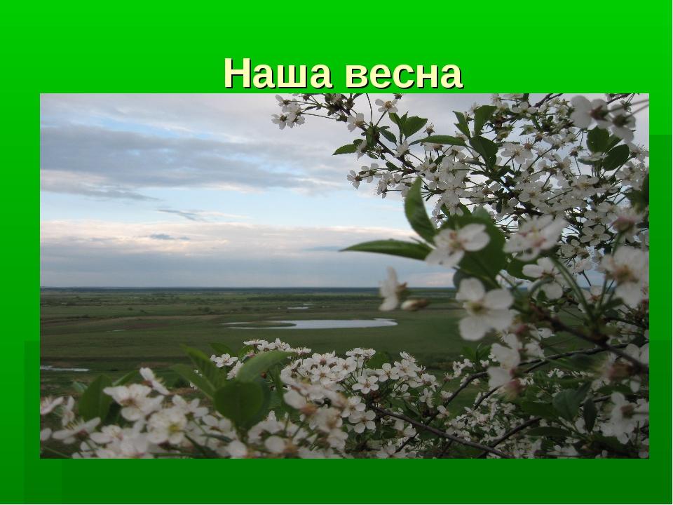 Наша весна