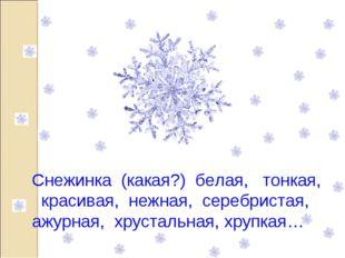 Снежинка (какая?) белая, тонкая, красивая, нежная, серебристая, ажурная, хрус