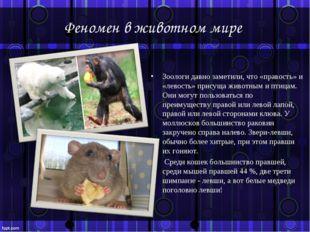 Феномен в животном мире Зоологи давно заметили, что «правость» и «левость» пр