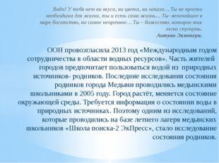 ООН провозгласила 2013 год «Международным годом сотрудничества в области водн
