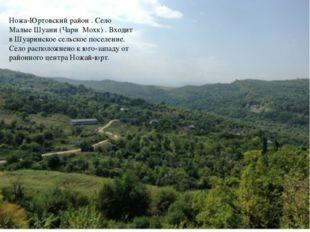 Ножа-Юртовский район . Село Малые Шуани (Чари Мохк) . Входит в Шуаринское сел