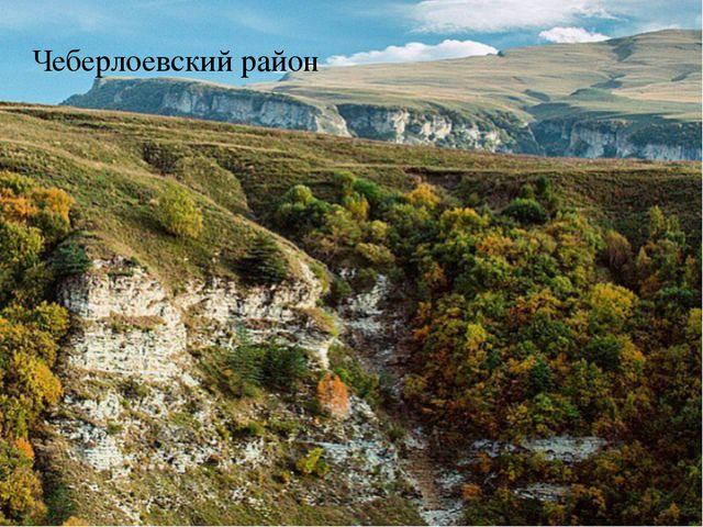 Чеберлоевский район