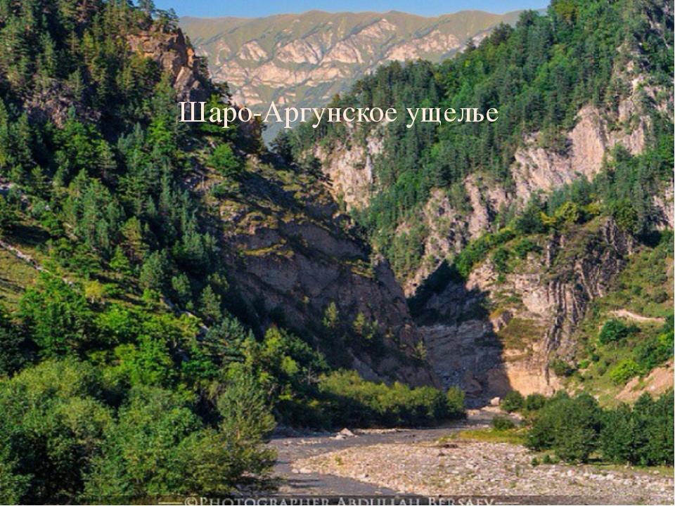 Шаро-Аргунское ущелье