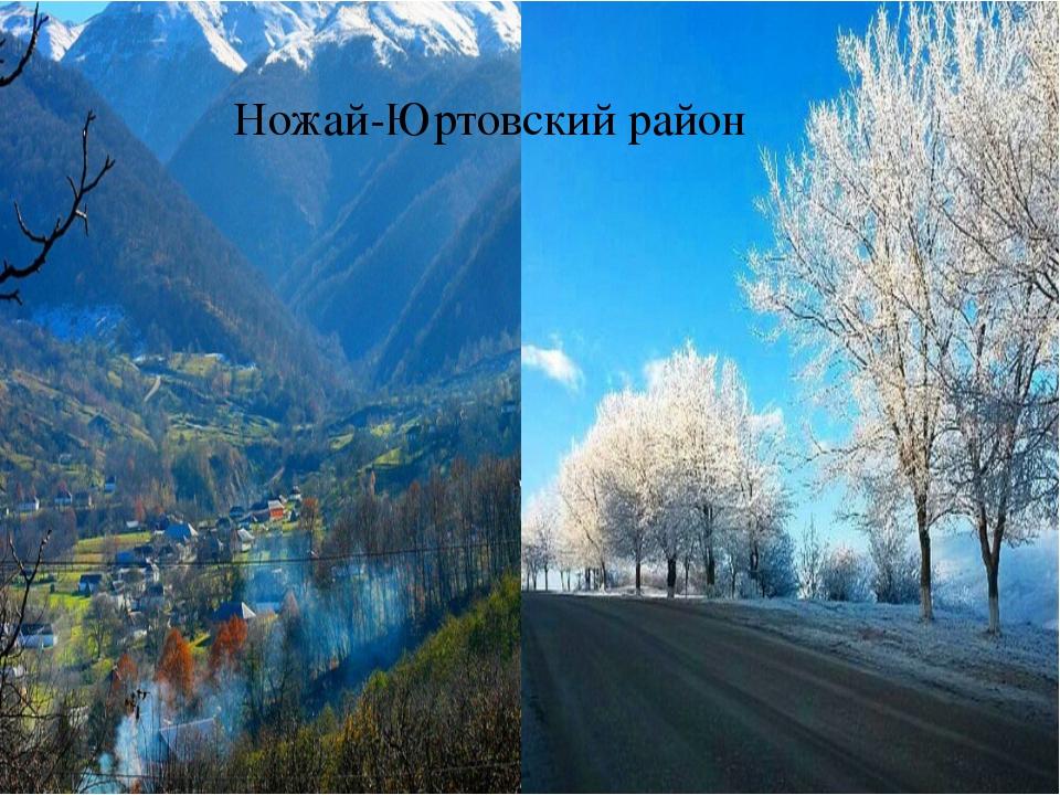 Ножай-Юртовский район