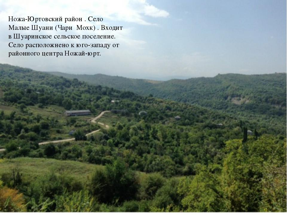 Ножа-Юртовский район . Село Малые Шуани (Чари Мохк) . Входит в Шуаринское сел...