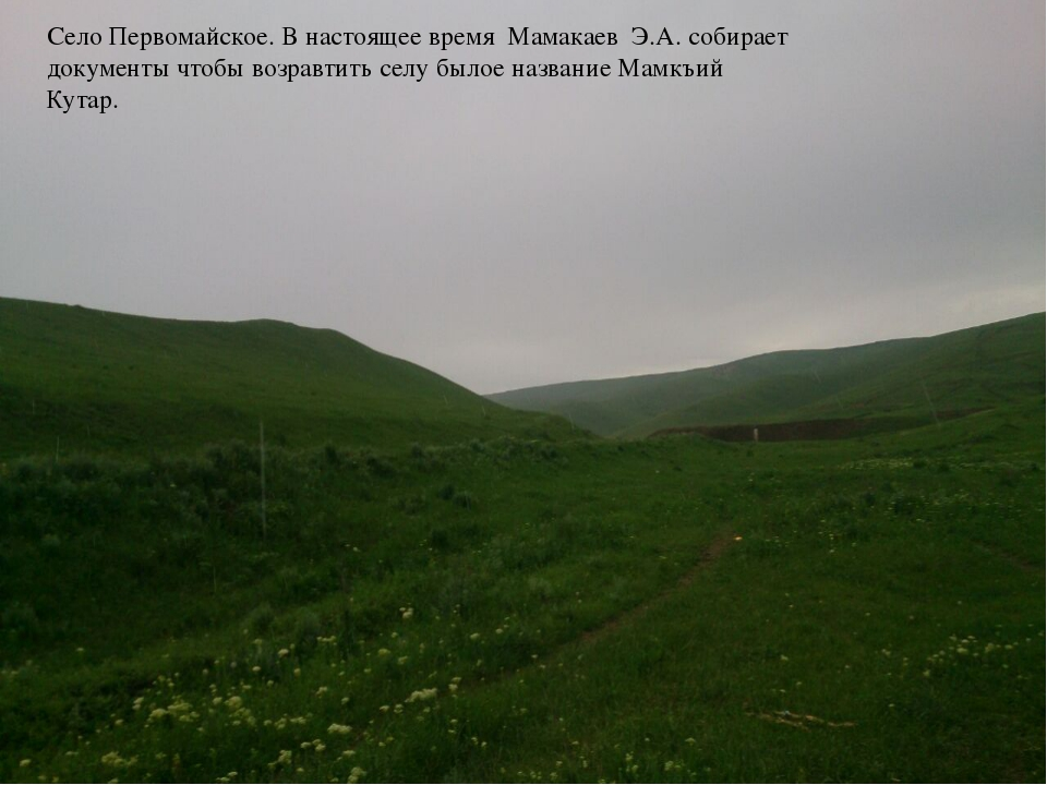 Село Первомайское. В настоящее время Мамакаев Э.А. собирает документы чтобы в...