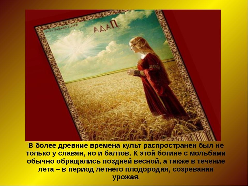 В более древние времена культ распространен был не только у славян, но и балт...