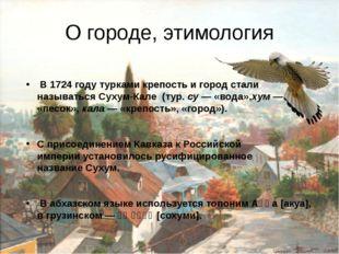 О городе, этимология В1724 годутуркамикрепость и город стали называтьсяС