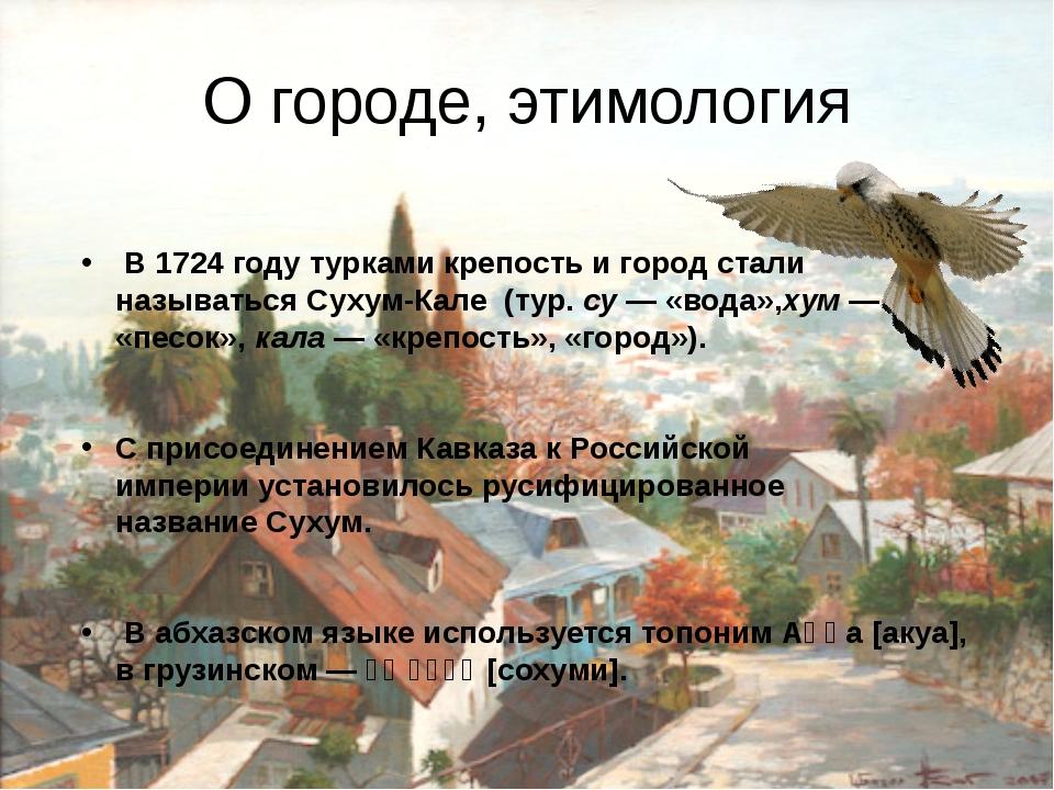 О городе, этимология В1724 годутуркамикрепость и город стали называтьсяС...