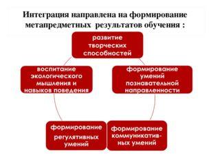 Интеграция направлена на формирование метапредметных результатов обучения :