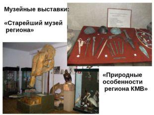 Музейные выставки: «Старейший музей региона» «Природные особенности региона К