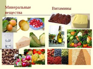 Минеральные вещества Витамины