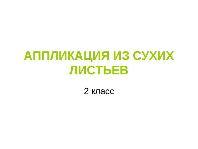АППЛИКАЦИЯ ИЗ СУХИХ ЛИСТЬЕВ 2 класс
