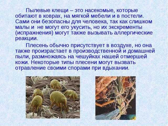 Пылевые клещи – это насекомые, которые обитают в коврах, на мягкой мебели и...