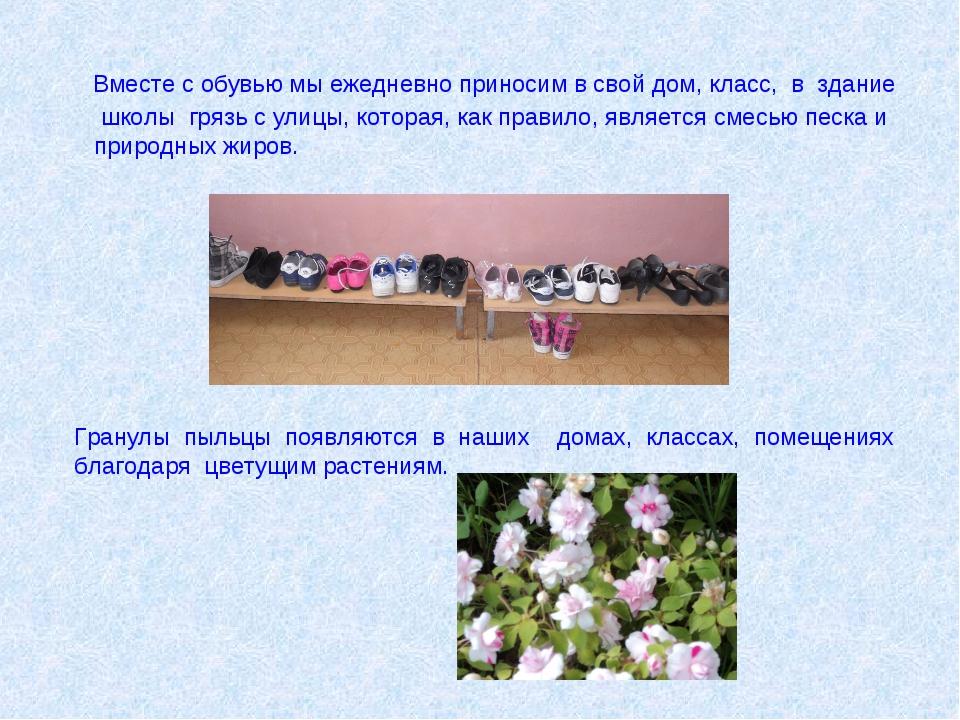 Вместе с обувью мы ежедневно приносим в свой дом, класс, в здание школы гряз...