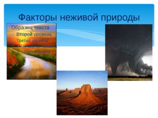Факторы неживой природы