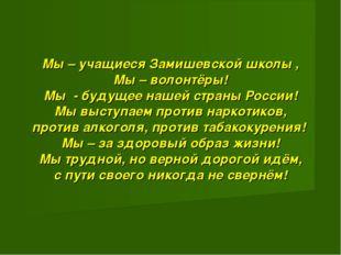 Мы – учащиеся Замишевской школы , Мы – волонтёры! Мы - будущее нашей страны