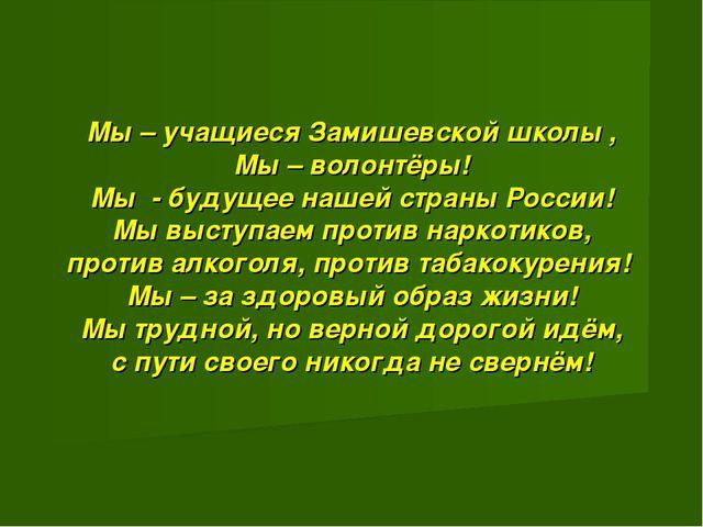 Мы – учащиеся Замишевской школы , Мы – волонтёры! Мы - будущее нашей страны...