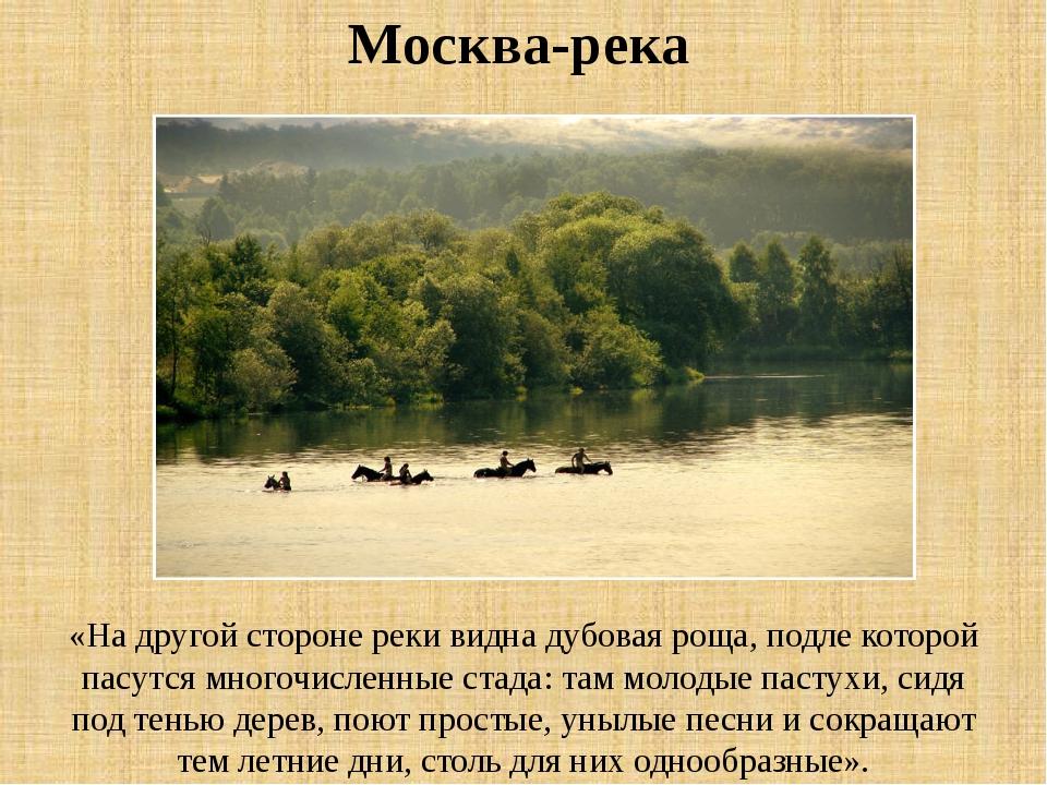 «На другой стороне реки видна дубовая роща, подле которой пасутся многочислен...