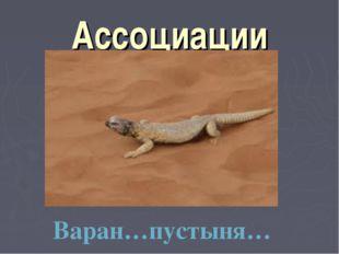 Ассоциации Варан…пустыня…