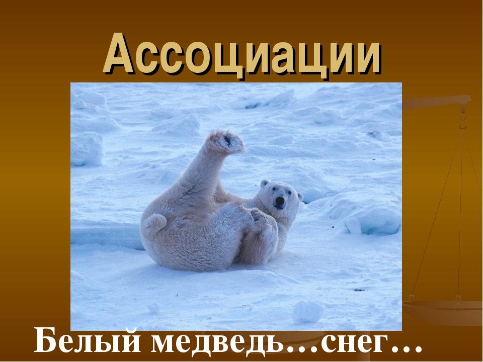 Ассоциации Белый медведь…снег…
