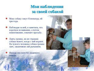Мои наблюдения за своей собакой Мою собаку зовут Клеопатра, ей три года. Набл