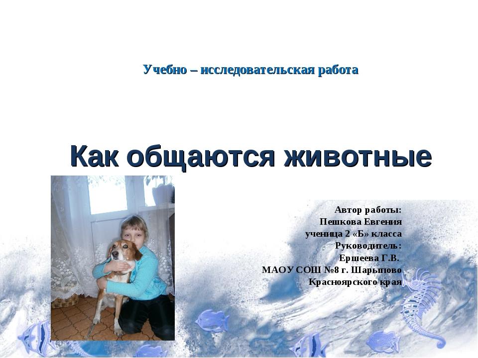 Учебно – исследовательская работа Как общаются животные Автор работы: Пешкова...