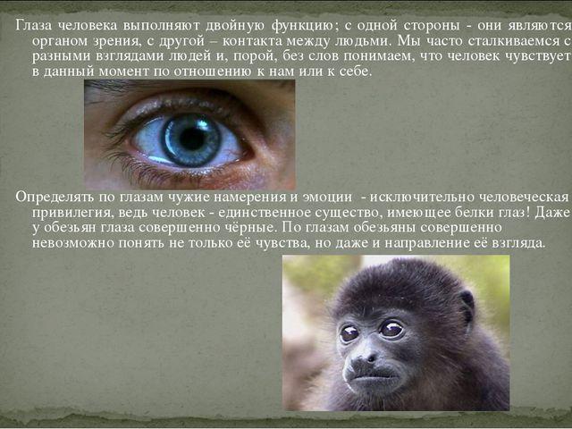 Глаза человека выполняют двойную функцию; с одной стороны - они являются орга...