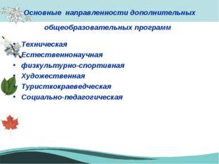 Основные направленности дополнительных общеобразовательных программ Техническ