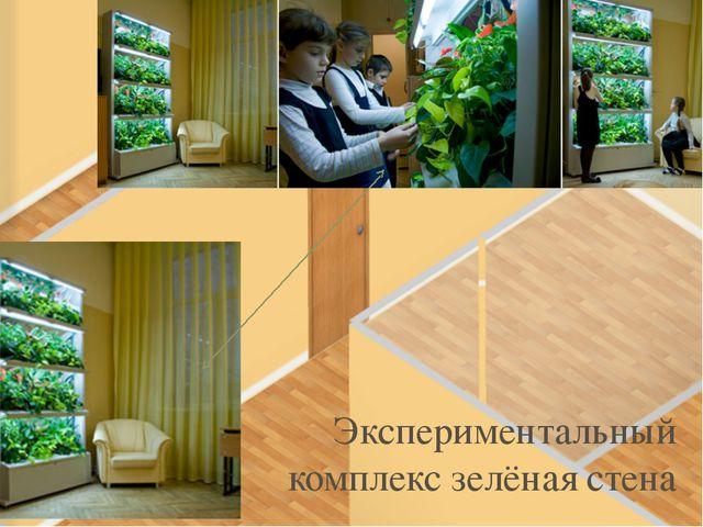 Зелёный уголок Экспериментальный комплекс зелёная стена